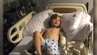Child Loses Hand From Lawnmower Accident in Berlin