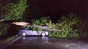 Southbury Declares State of Emergency After Tornado