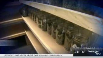 State Debates Legalization of Recreation Marijuana