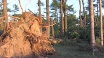 State Parks to Reopen After Tornado Damage