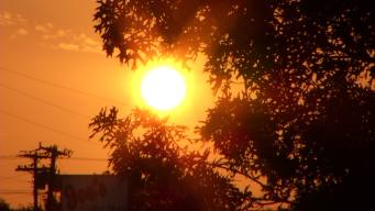 Longest Heat Wave in 10 Years Expected