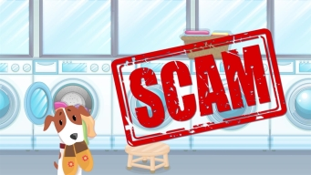 Tips to Avoid Scams When Buying a Puppy
