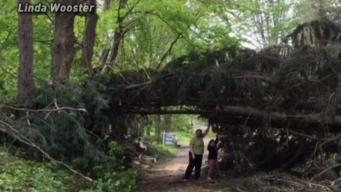 Western Connecticut Still Recovering from Severe Weather