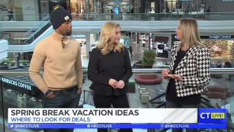 CT LIVE!: Where to Look For Spring Break Vacation Deals