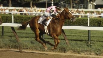 How Much Do You Know About the Triple Crown?
