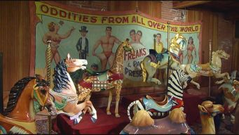 This Weekend: New England Carousel Museum