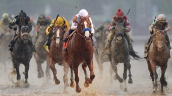 Derby Winner May Face Fresh Horses in Preakness
