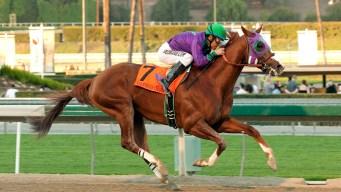 California Chrome Leads Derby Hopefuls