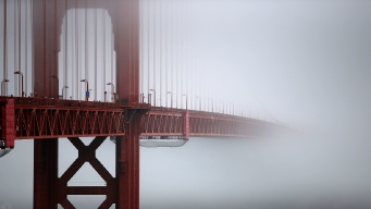 Mercury in California Fog Could Disrupt Food Chain: Report