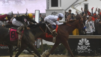 Justify Wins Preakness, Sets Sights on Triple Crown