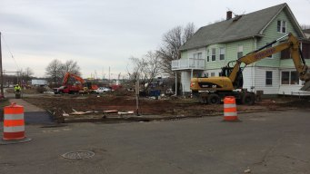 Hundred Year Old Tree Removed For Traffic Project in New Haven