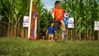 This Weekend: Lyman Orchards Corn Maze
