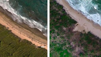 Scientists Race to Document Puerto Rico's Coastal Heritage