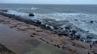 Police ID Woman Found Dead in West Haven Surf