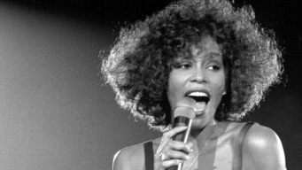 Whitney's Dress, Earrings up for Auction