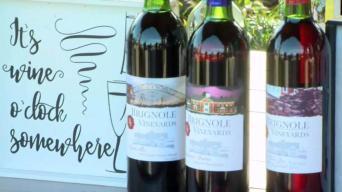 Brignole Vineyards