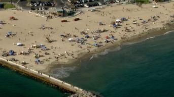 Possible Shark Attack Closes Calif. Shoreline