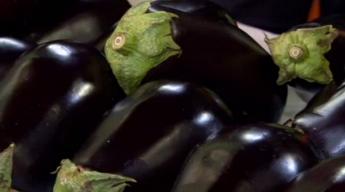 Crispy Native Eggplant with Basil, Sun Gold Tomatoes and Mozzarella