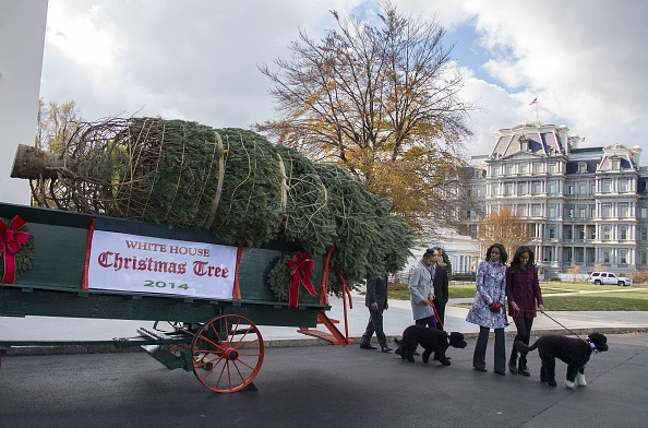 First Lady Michelle Obama (2nd R), and her daughters Malia (R) and Sasha (3rd R) walk around as the White House Christmas Tree is delivered to the White House in Washington, DC, November 28, 2014.