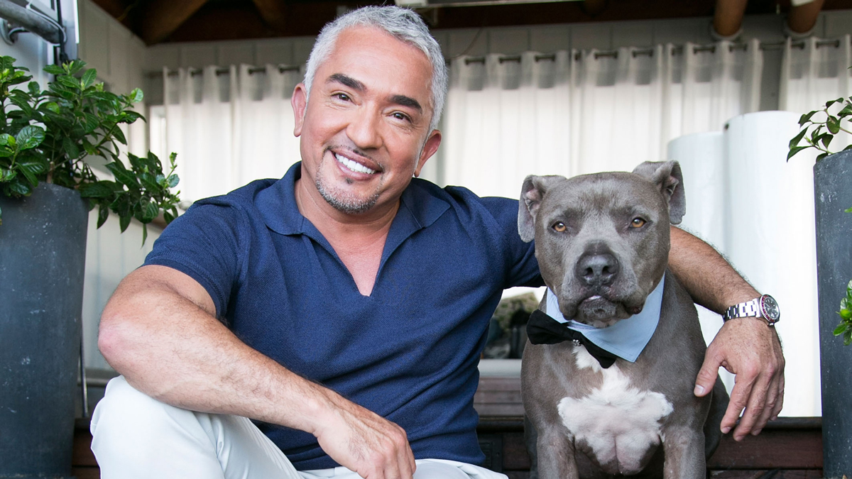 Dog behaviorist Cesar Millan attends the celebration for Season 2 of Nat Geo Wild's