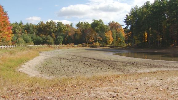 Dry Spell Drains Enfield Pond