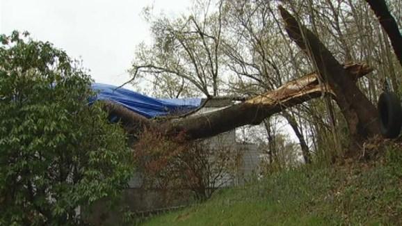 125e5d5e1c5d Tree Crashes Into Beacon Falls House - NBC Connecticut