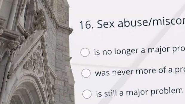 Catholic Church Employees Views on Abuse Revealed