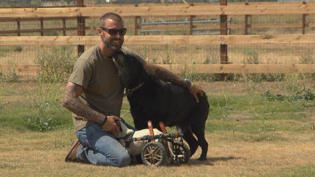 [NATL]Puppy Love: Salvation Through Rescue Dogs