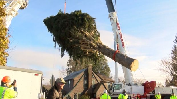 Rockefeller Center Christmas Tree Is on Its Way to NYC