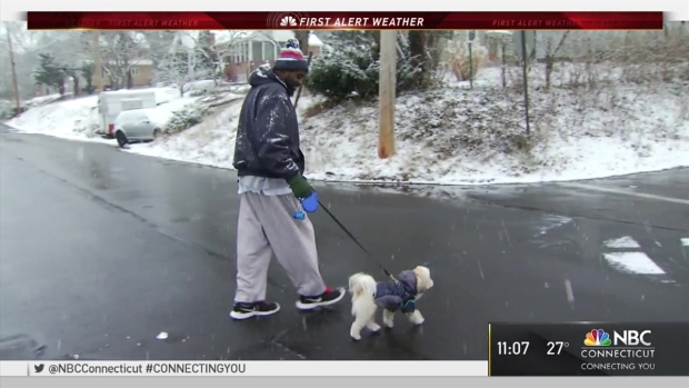 [HAR] Snow Leaves Beautiful Winter Scene in New Haven County