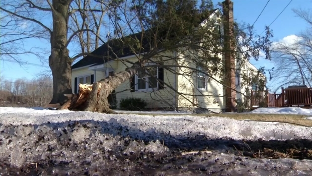 [HAR] Trees and Wires Come Down in South Windsor
