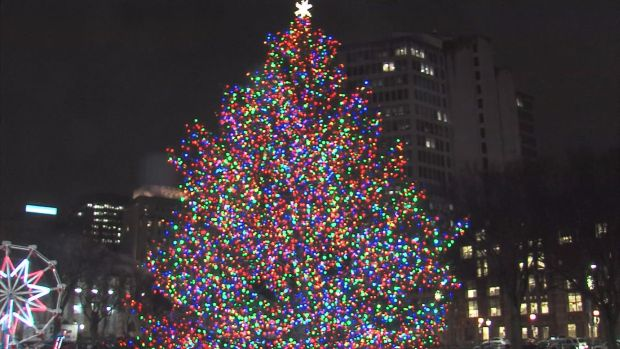 New Haven Holiday Tree Lighting 2015