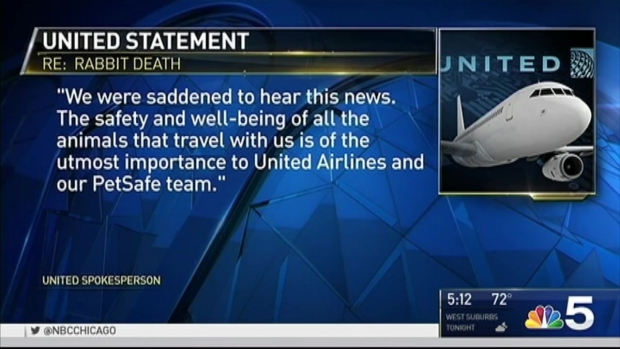 [NATL-CHI] Death of Giant British Rabbit Adds to United Airlines' Woes