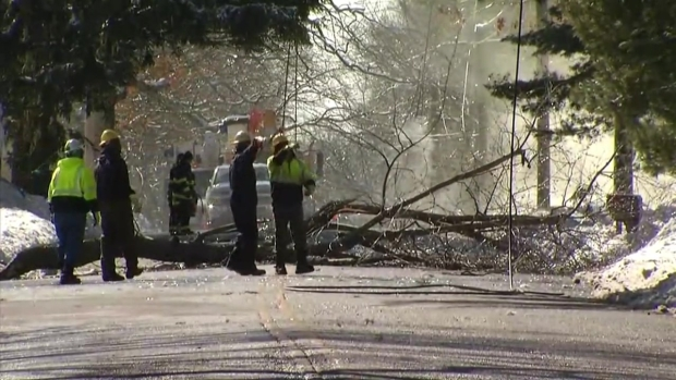 Winds Bring Down Power Lines in Hamden