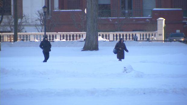 New Haven Braves Deep Freeze