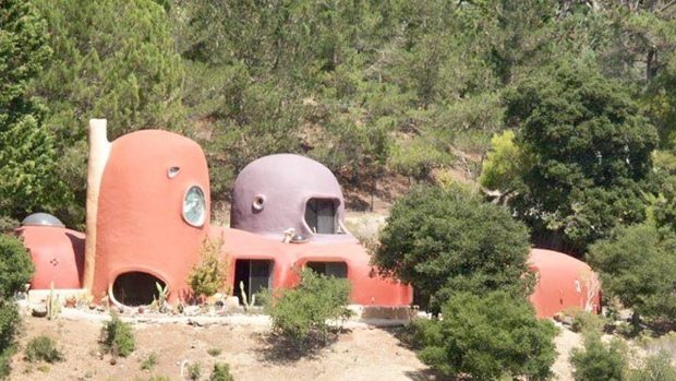 Look Inside 'Flintstones' House in Hillsborough