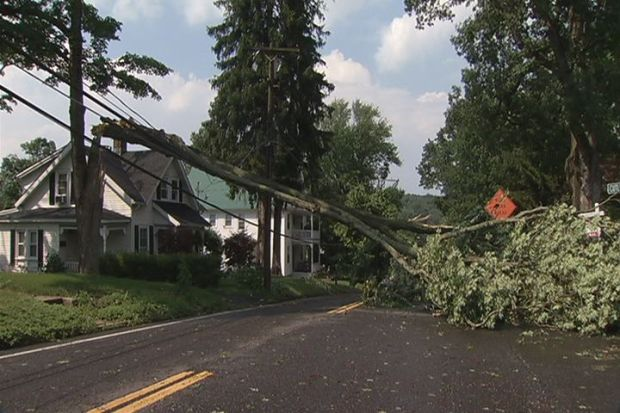 [HAR] Trees Down, Power Outages After Intense Summer Storms