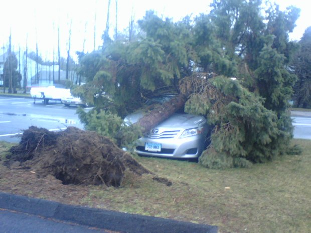 [HAR] Storm Brings Down Trees and Wires