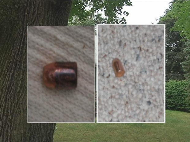 [HAR] Stray Shots Put Neighborhood on Alert