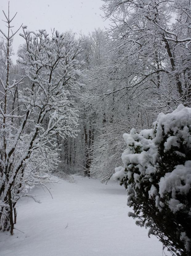Your Weekend Weather Photos