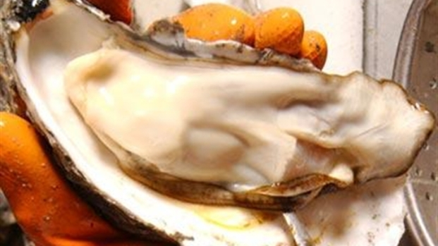 [HAR] This Weekend : Oyster and Peach Festivals