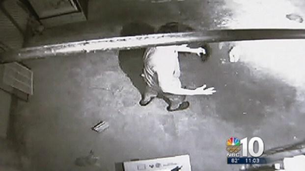 [PHI] Man Caught on Camera Juggling Kittens: SPCA