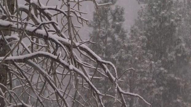 Nevada Sees Season's First Snowfall