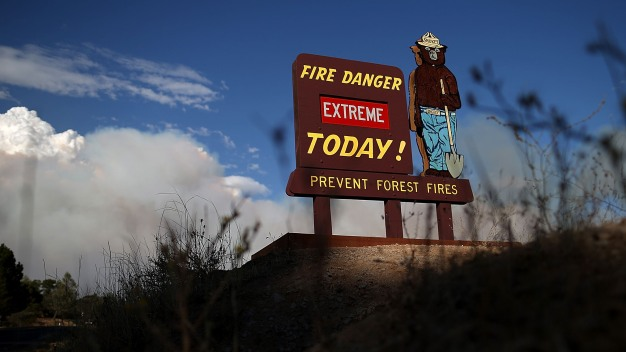Environmentalists Balk at Plan to Let Loggers Clear Burned Yosemite Forest