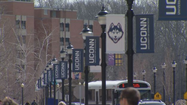 UConn to Offer Class on Cannabis