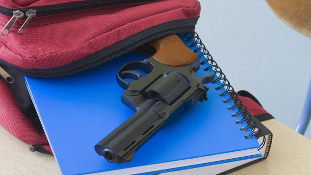 """Armed Teacher: """"I Never Thought About it Before Sandy Hook"""