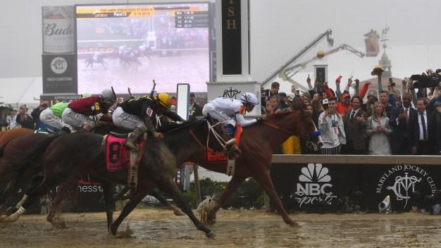 Justify Wins Foggy Preakness, Keeps Triple Crown Bid Alive