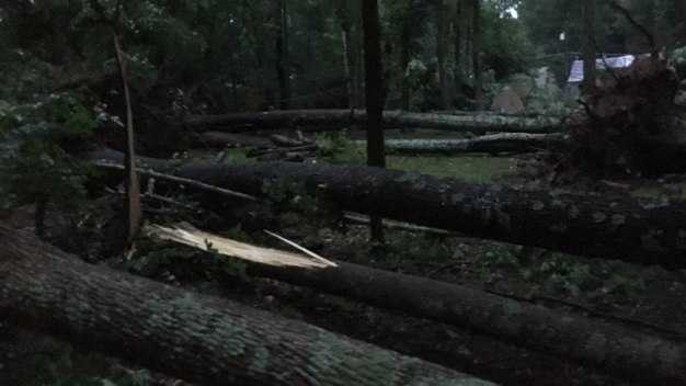 Storms Leave Behind Pockets of Damage Across State