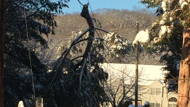 Wet Snow Weighs Down Wires, Knocks Out Power Along Shoreline