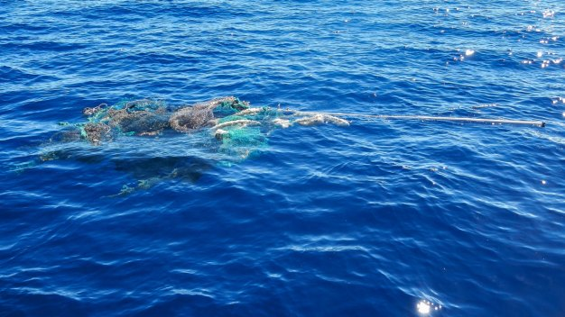 Which Is Bigger: Great Pacific Garbage Patch or Your State?